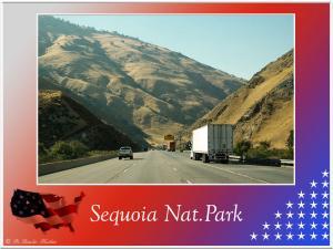 (1)-Sequoia