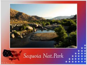 (2)-Sequoia