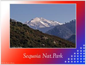 Sequoia-Nat-Park-2345 (2)